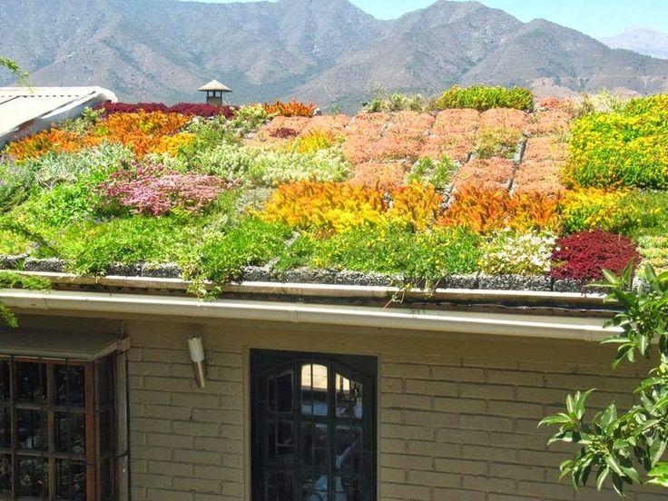 1000+ ötlet A Következőről: Extensive Dachbegrünung A Pinteresten ... Intensive Extensive Dachbegrunung Nachhaltig