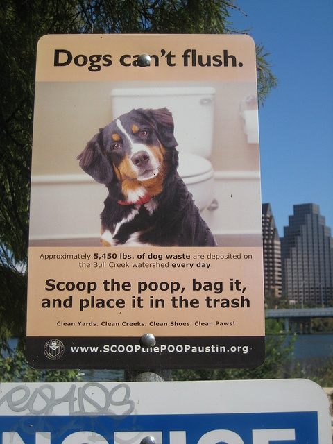 11 Best Images About Scoop The Poop On Pinterest
