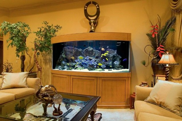 29 Amazing Aquariums For Impressive Decoration Of Your Home