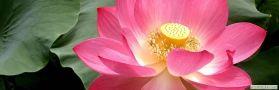 tienda esoterica www.magiaentuvida.com
