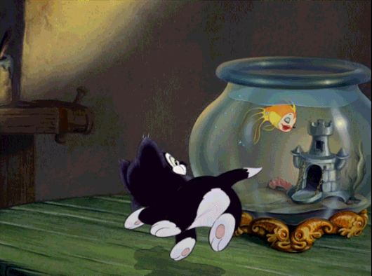 Pinocchio's Cleo and Figaro are the Best | Oh My Disney | Awww
