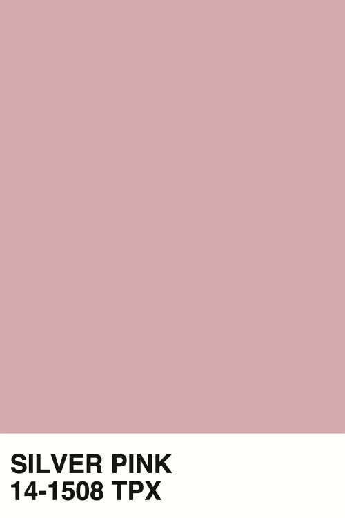 Silver Pink 14 1508 Tpx Canvas Artwork By Honeymoon Hotel Icanvas In 2021 Pastel Color Background Pastel Color Wallpaper Pantone Colour Palettes Dusty pink color wallpaper