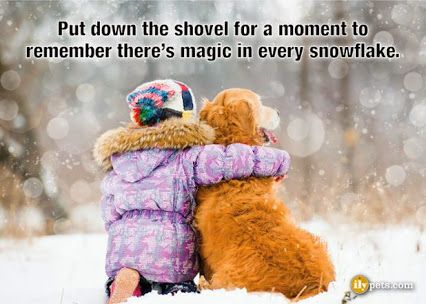 Put down the shovel for a moment to remember there's magic in every snowflake.