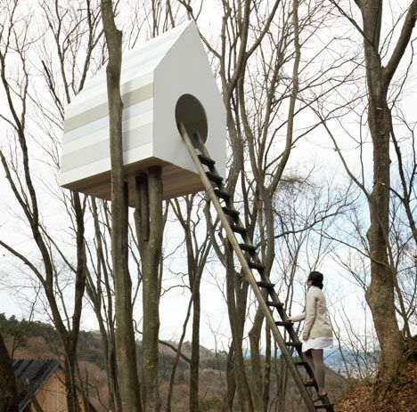 Nesting Box: Nature Center Tree House + 78-Room Bird Nest