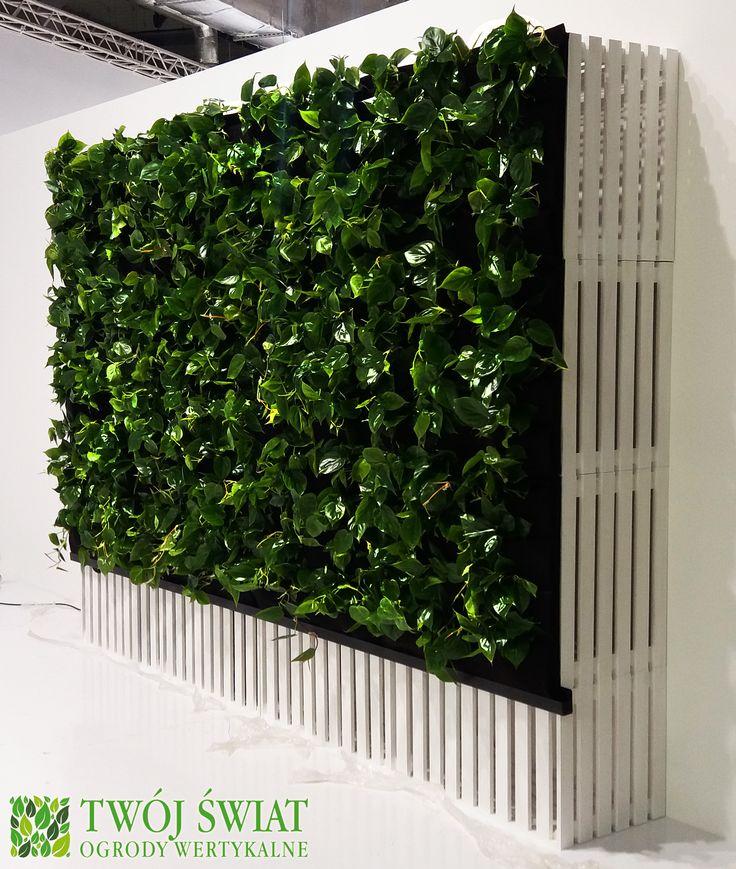 Mobilna zielona ściana zbudowana z modułów (drewnianych skrzynek). #verticalgarden #zielonesciany