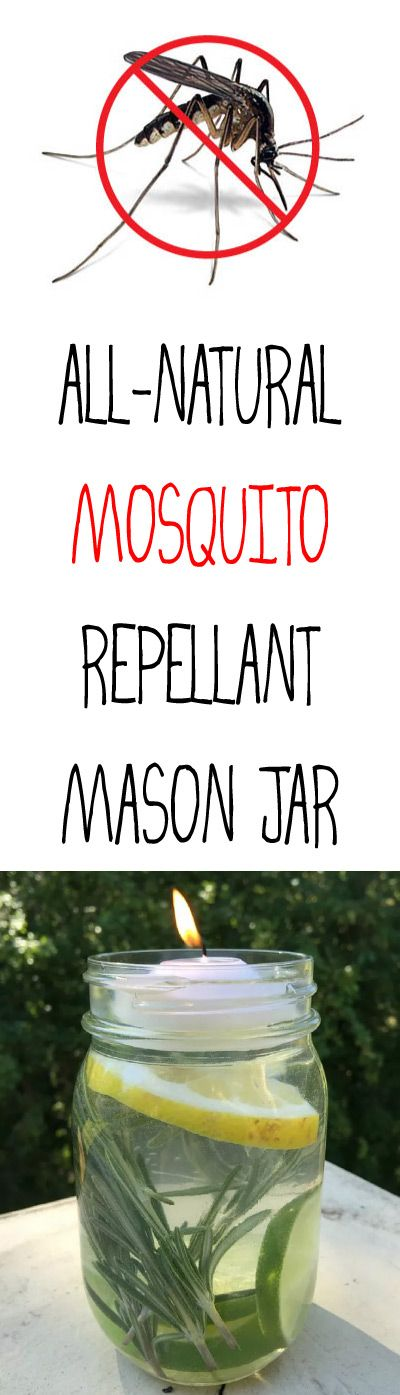 We found that these DIY non-toxic luminaries do a great job as a Mosquito Repellant, warding off the bugs, and they're beautiful to look at too!