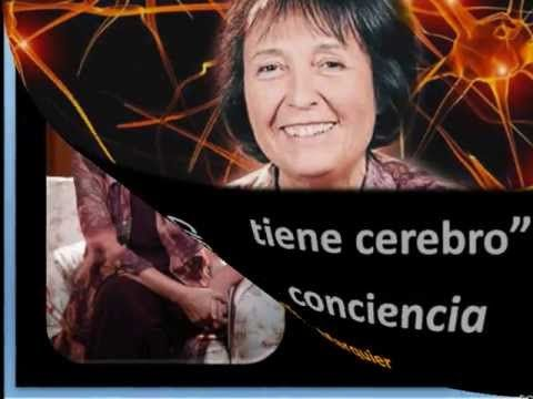 ANNIE MARQUIER - EL CORAZÓN TIENE CEREBRO - CIENCIA Y CONCIENCIA