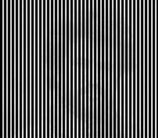 shake your head from side to side