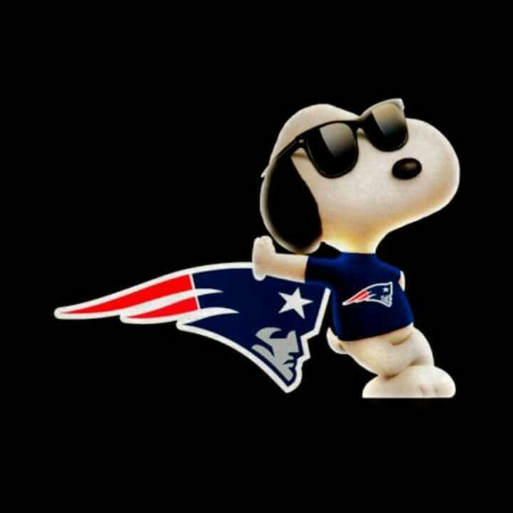 I love the New England Patriots