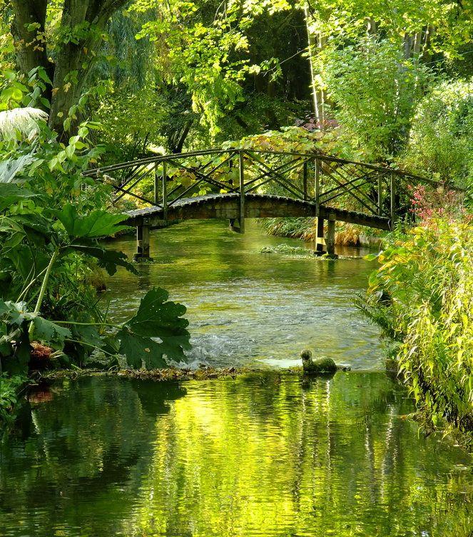 River Itchen at Ovington, Hampshire, England @}-,-;--