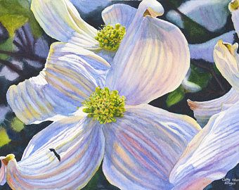 Blanco Cornejo acuarela pintura lámina por Cathy Hillegas, 16x21.5, imprimir acuarela, primavera flores, azul, púrpura, amarillo, verde, marrón
