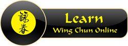 learn wing chun