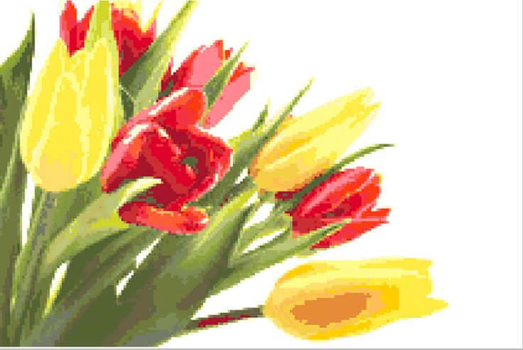 CROSS STITCH FREE PATTERN : Tulips Bouquet