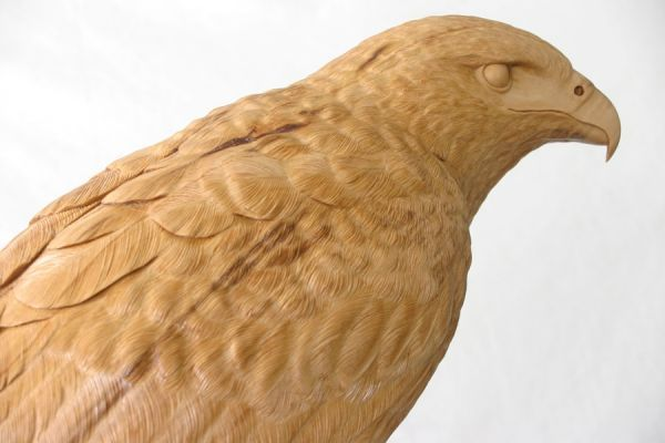 Best images about the birds of prey sculptures