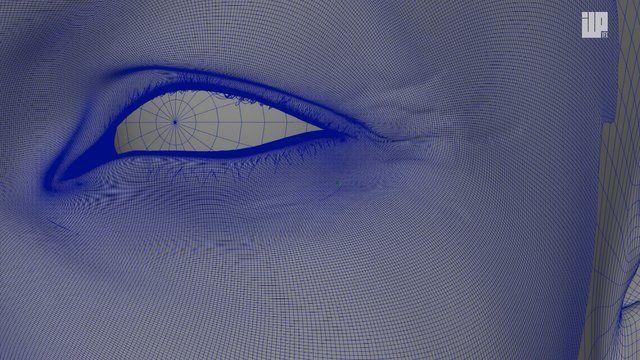 #detailed #macro #rendering