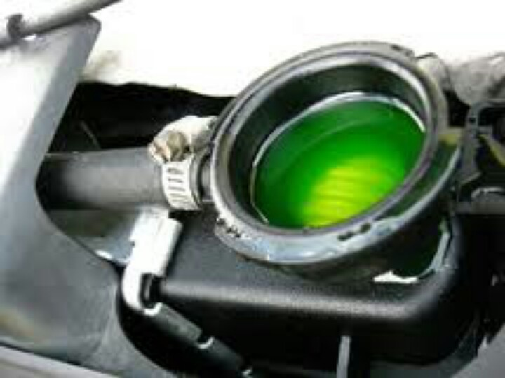 Nice green coolant...many different colored coolant on newer cars..you can utilize a universal coolant that covers most applications that may be yellowish in color