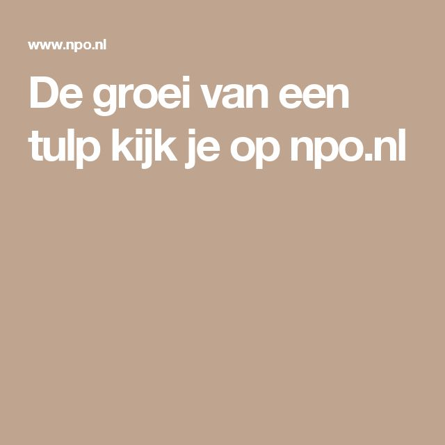 De groei van een tulp kijk je op npo.nl