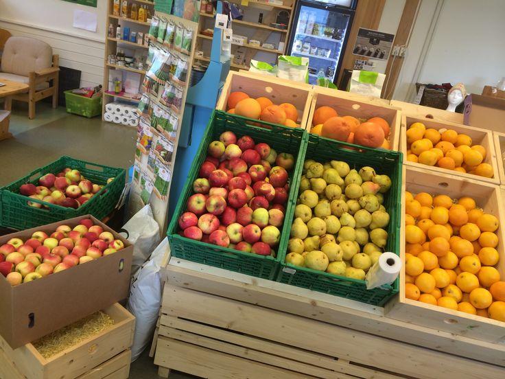 ØkoLogisk grøntforsyning på www.reintlogisk.no #Stornaustet #6680Halsanaustan  Fredag 11:00-18:00 Velkommen