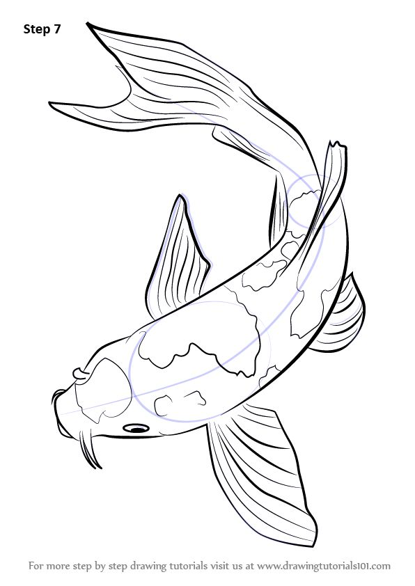 Best 25 fish drawings ideas on pinterest fish for Koi fish sketch