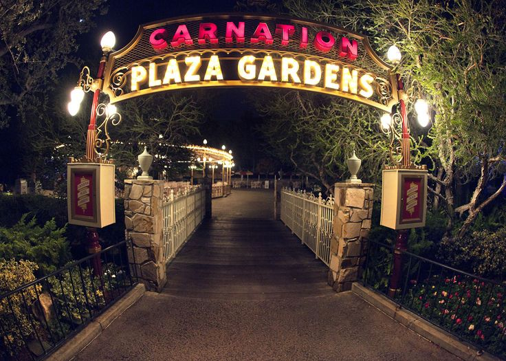 find this pin and more on wedding central florida venues park plaza gardens at winter