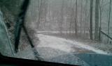 Old Mill Creek rd
