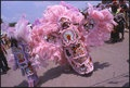 Mardi Gras Indians from nola.com