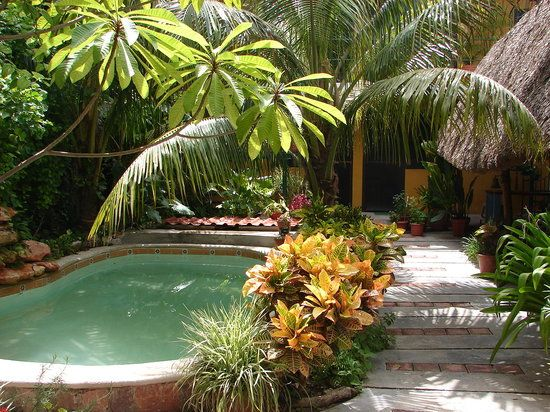 Madeira By Narellan Pools: 25+ Best Ideas About Courtyard Pool On Pinterest