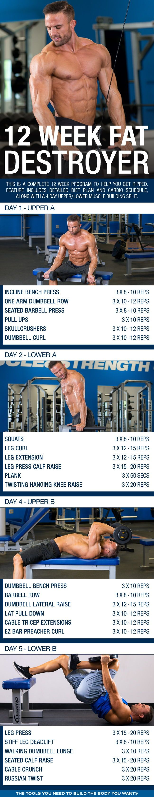(Click through to download PDF!) This is a complete 12 week program to help you get ripped. Feature includes detailed diet plan and cardio schedule, along with a 4 day upper/lower muscle building split. #workout #gym #fitness #bodybuilding