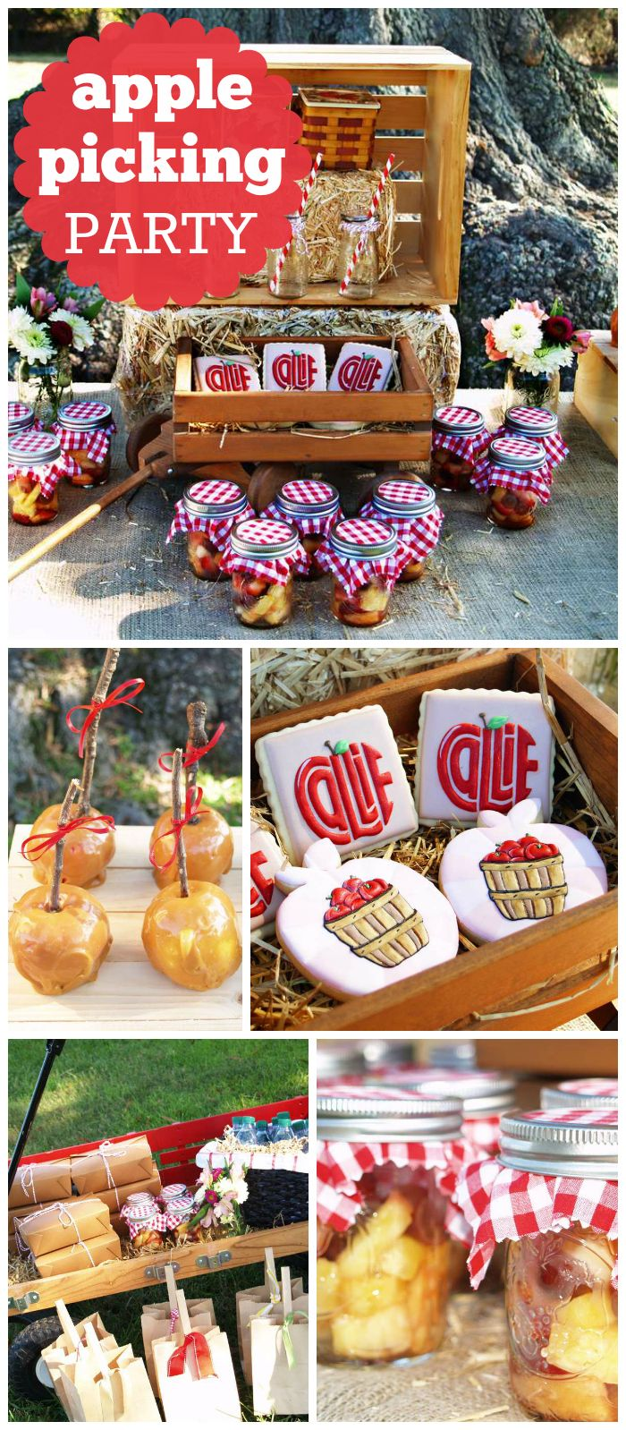 An apple harvest birthday party with caramel apples, decorated cookies and mason jar applesauce favors! See more party planning ideas at CatchMyParty.com!
