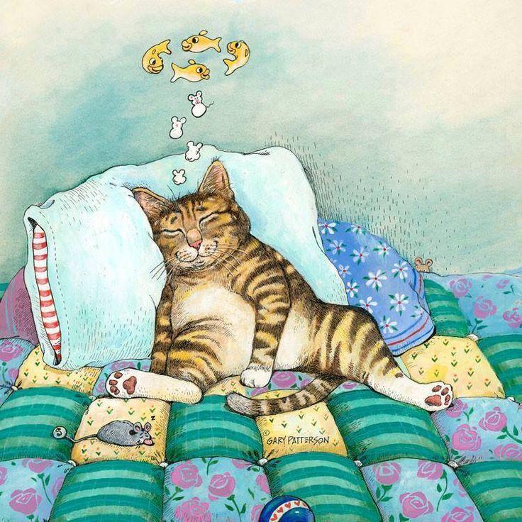 Веселые открытки кошек