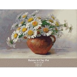 Daisies in Clay Pot