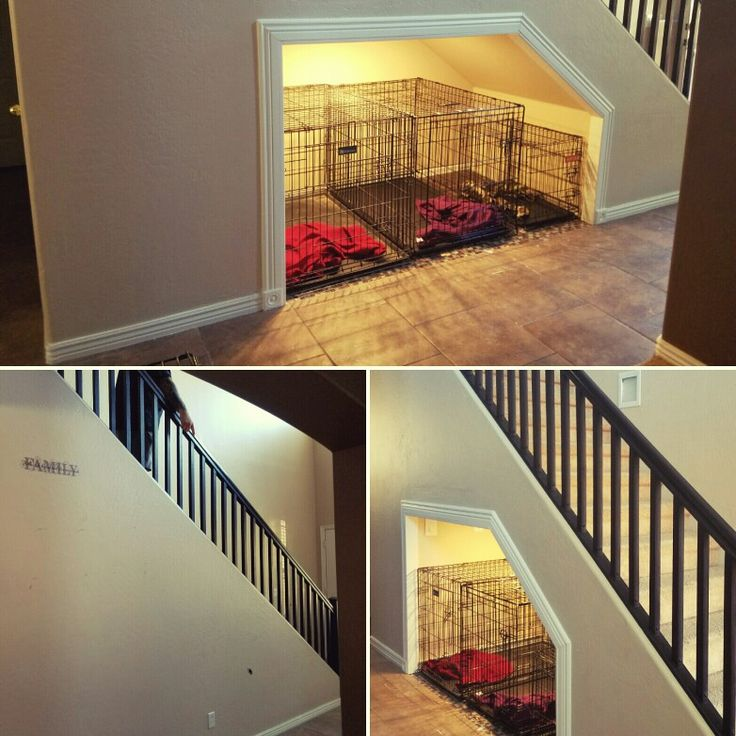 1000+ Ideas About Under Stairs On Pinterest