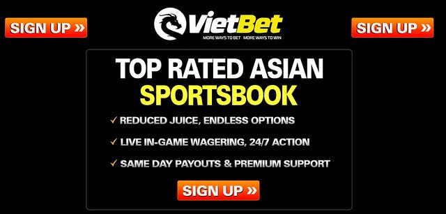 Vietbet sports betting bodog betting odds ufc explained
