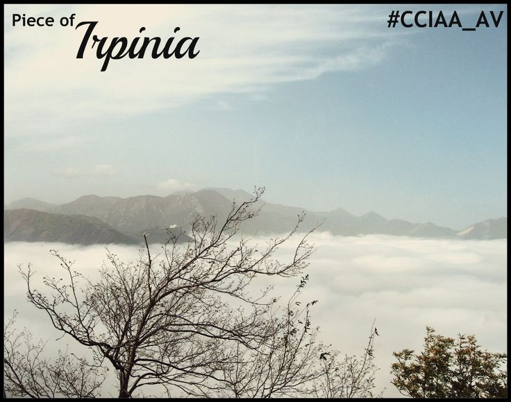 #Irpinia #CCIAA_AV