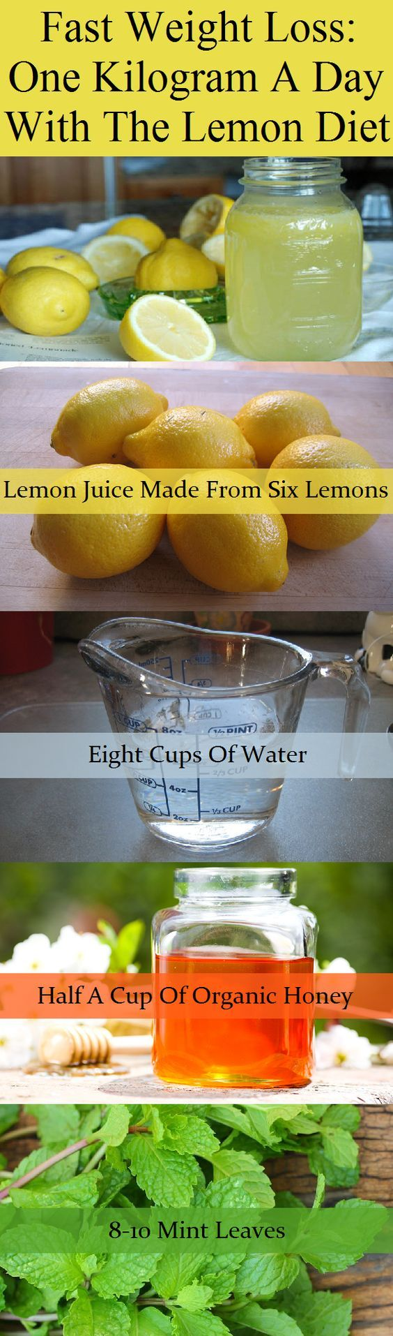 Fast Weight Loss One Kilogram A Day With The Lemon Diet-Ingredients:Lemon juice (made from six lemons).Eight cups of water.3-4 ice cubes.Half a cup of organic honey.8-10 mint leaves.Instructions:.Place the water in a large clean bowl and let it heat on low heat. Keep in mind that you must warm it a little bit. Don't make it too hot or boil it. It is ideal to bring it to 60 degrees or slightly less. After that, you must pour the...