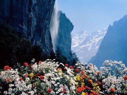 Напоминайте себе почаще, что цель жизни вовсе не в том, чтобы выполнить все намеченное, а в том, чтобы наслаждаться каждым шагом, сделанным ...