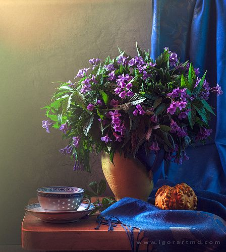 Фотограф Igor Sirbu (Igor Syrbu) - congratulations celebration #853250. 35PHOTO