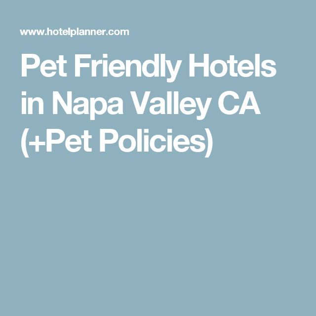 Pet Friendly Hotels In Napa Valley Ca Policies Wine Travel Pinterest