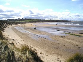 Gullane Beach