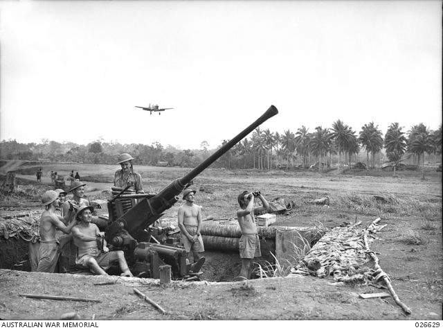 An Australian P-40 Kittyhawk prepares to land at Gili-Gili Airfield, Papua New Guinea, in 1942. The Bofors AA gun in the foreground is manned by members of the 2/9th Light Anti-Aircraft Battery, Royal Australian Artillery. (AWM)