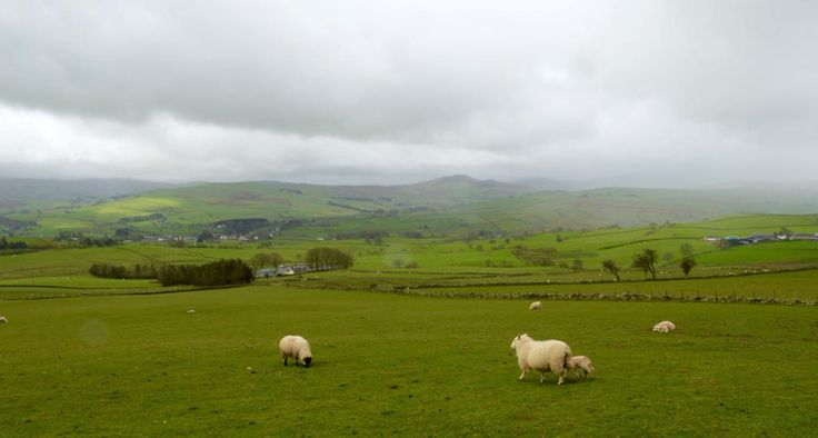 View towards Bala from Cerrigydrudion this morning