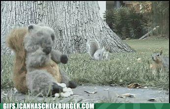 Funny Animal Gifs - Different Tactics
