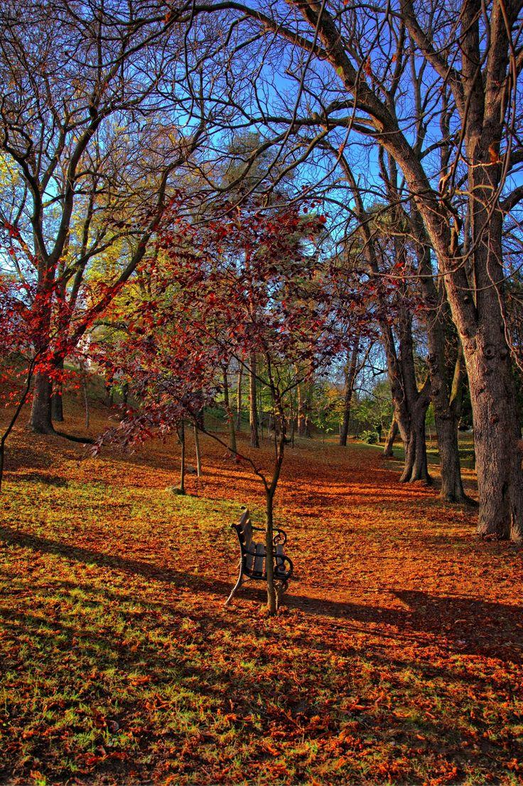 Autumn in Cluj, Romania (by Nuta Lucian), www.romaniasfriends.com