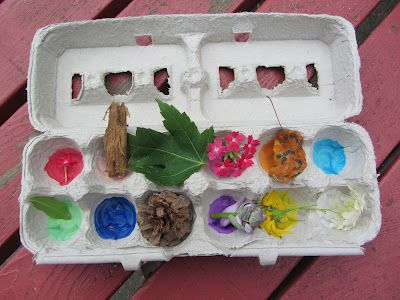Use a color coded egg carton to find nature items during a nature walk.
