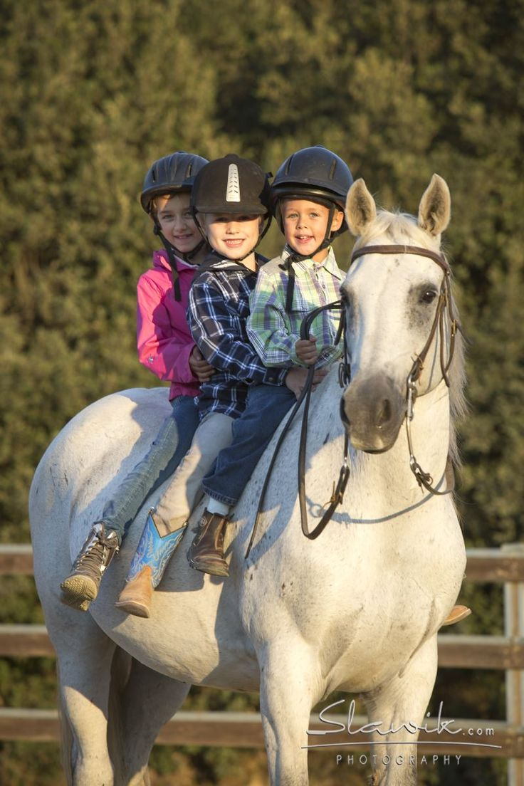 Childrens Horse Riding Holiday Italy   Castellare di Tonda Quarter Horses