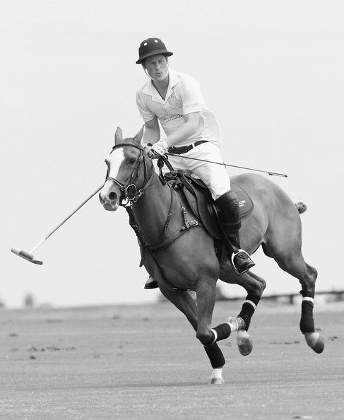 Harry. On horseback. Playing polo. You're welcome.