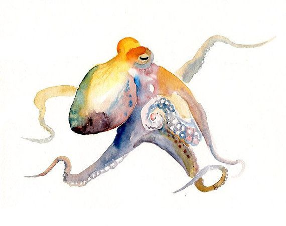 OCTOPUS by DIMDImini ACEO print by dimdimini on Etsy, $5.00
