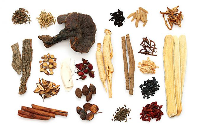 List of Chinese Herbs with pictures, descriptions and health uses.