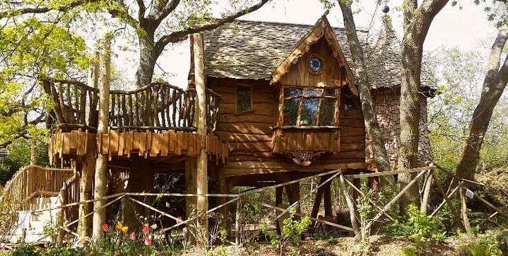 Image result for blackberry wood treehouse