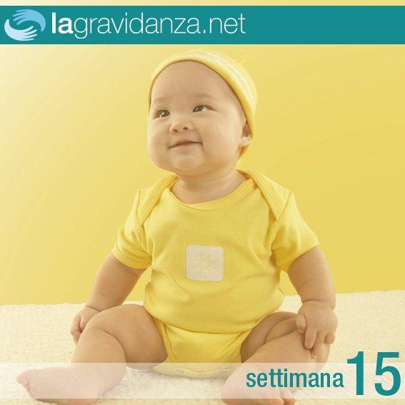http://www.lagravidanza.net/settimane/15-settimana-di-gravidanza-aggrotta-la-fronte-e-fa-smorfie